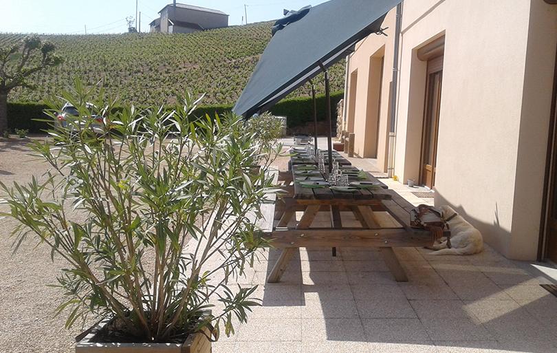 Domaine Aufranc - Gîte de l'artisan vigneron